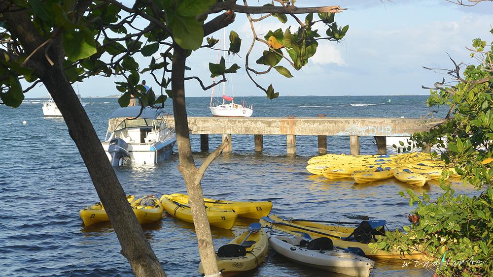 Aufbruch zur Bio Bay in Fajardo